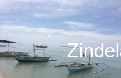 ZDP15228, Beach Front For Sale in PUERTO PALAWAN