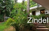 ZDP15386, Big House and Lot For Lease in South Forbes Park Village Makati